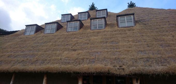 ラコリーナ近江八幡の屋根